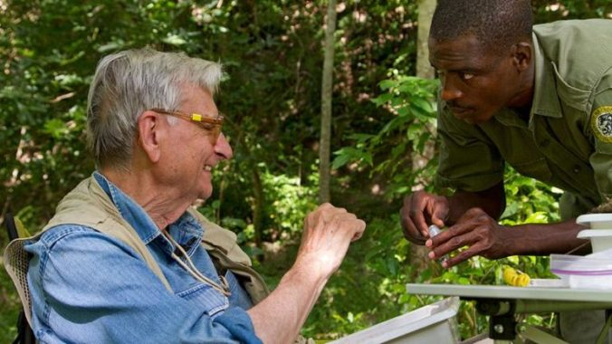 mozambique_2012_2437-768x432