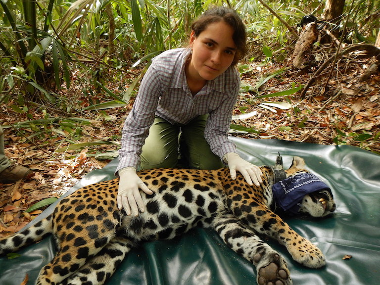 MONGABAY – A rich person's profession? Young conservationists struggle to make it