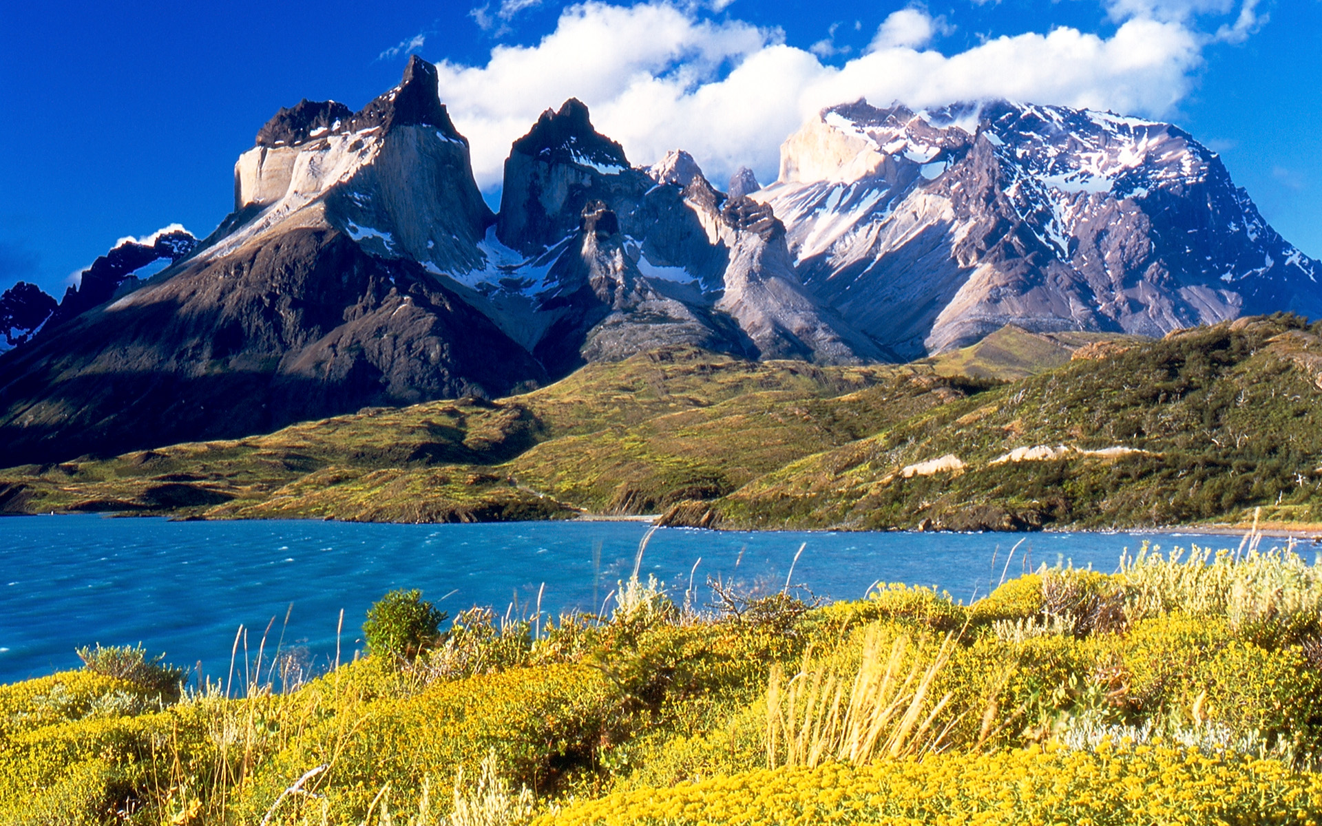 HUFFPOST –Chile Establishes 10 Million Acres Of National Parks in 'Gigantic' Move For Conservation